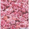 Paper Pintat Escapade L770-03