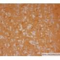 Papel Pintado Jardins Suspendus 8522 2411