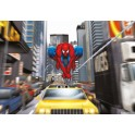 Spiderman 1-425 184 x 127