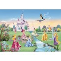 8-414 Princess Castle 368 x 254