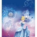4-407 Cinderella Night 184 x 254